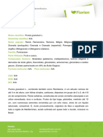 POMEGRANATE-40.pdf