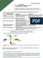 Taller Semana 05-Macromoleculas-Proteinas y Ac Nucleicos-convertido.docx