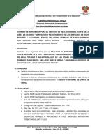 01.TDR RESP CORTE.docx