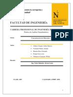 CONCENTRACIÓN DE MINERALES.docx