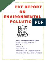polllution.docx