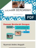 Demam Berdarah Oleh Dr. Nanda Fd