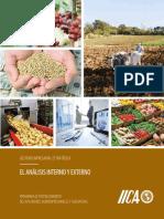 3.0 IICA_El Análisis Interno y Externo.pdf