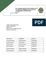 EXTRACCION Y CUANTIFICACION DE ANTOCIANINAS EN LA UVA.docx