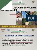 Labores de Conservacion en Frutales