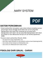 12._Sistem_Urinary_.pdf