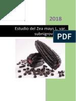 MONOGRAFIA MAIZ MORADO.docx