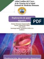 Exploración de Aparato Digestivo IPPA Semiologia