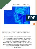 2-FUNCIONAMIENTO DEL CEREBRO.pptx