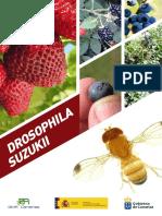 Mosca del vinagre Drosophila Suzukii