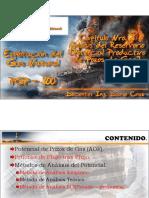 Capítulo Nro. 3 - Análisis Del Reservorio [Potencial Productivo de Pozos de Gas](1)