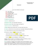 Substantivul_-_clasele_a_V-a_i_a_VI-a.docx