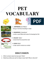 Ppt About Pet, Insects, Colors, Clothes