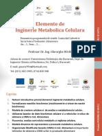 Ing-Metab-prez-curs-2017f.pdf