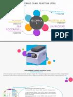 10185_PPT PCR.pptx