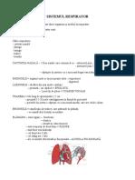 sistemul_respirator.doc