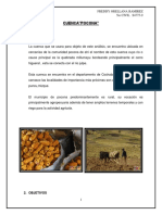 informe cuenca pocona.docx