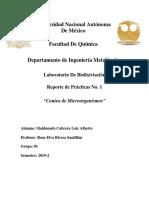 Informe 1 Biolix.docx