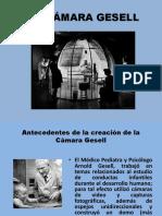 La Cámara Gesell COLEGIO DE ABOGADOS Y NOTARIOS.pptx