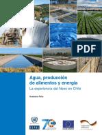 Agua producción de alimentos y energía.pdf