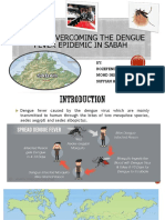 WAYS OF OVERCOMING THE DENGUE FEVER  EPIDEMIC IN.pptx
