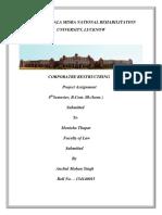 project finance.docx