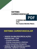 patologia do sistema cardiovascular I.pptx