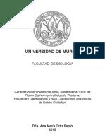 TAMOE.pdf