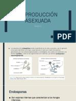 Reproducción asexuada.pptx