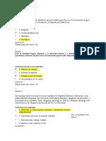 Quiz 1 de Ppu Corregido