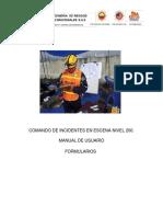 MANUAL DE USUSARIO FORMULARIOS.docx