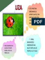 BUBURUZA.docx
