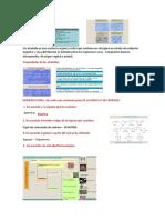 adptaciones-morfologicas (1)