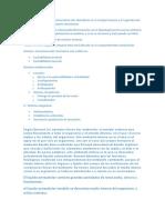 PASITO DE 3 TEMAS FISIO.docx