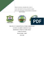 Informe-N-2.docx