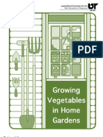 26554950 Growing Vegetables in Home Gardens