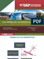 5. ABSORCIÓN DE LOS XENOBIÓTICOS.ppt
