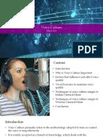 MA Presentation on Voice Culture
