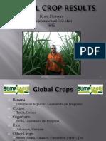 Global Crop Results