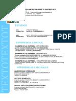 JULIAN ANDRES BARRIOS RODRIGUEZ.docx