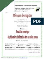 Memoire_de_magister2012.pdf