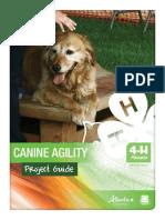 CanineAgilityProjectGuide.pdf