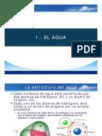 IMPORTANCIA DEL AGUA 2019.pdf