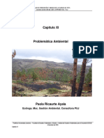 diagnostivo-problematica-ambiental-lago-tota.pdf