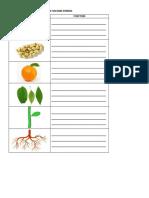 Ciencias - JA.pdf