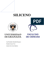 Trabajo Siliceno Final grupal.pdf