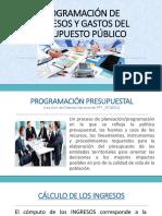 01 Programacion de Ing y Gastos Del Presupuesto_ Exposicion - Copia