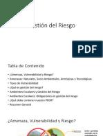 Gestión del Riesgo.pptx
