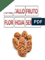 RAIZ TALLO Y OTROS.docx