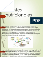 Fuentes Nutricionales